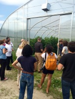 intervale community farm