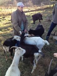 goat tour 3